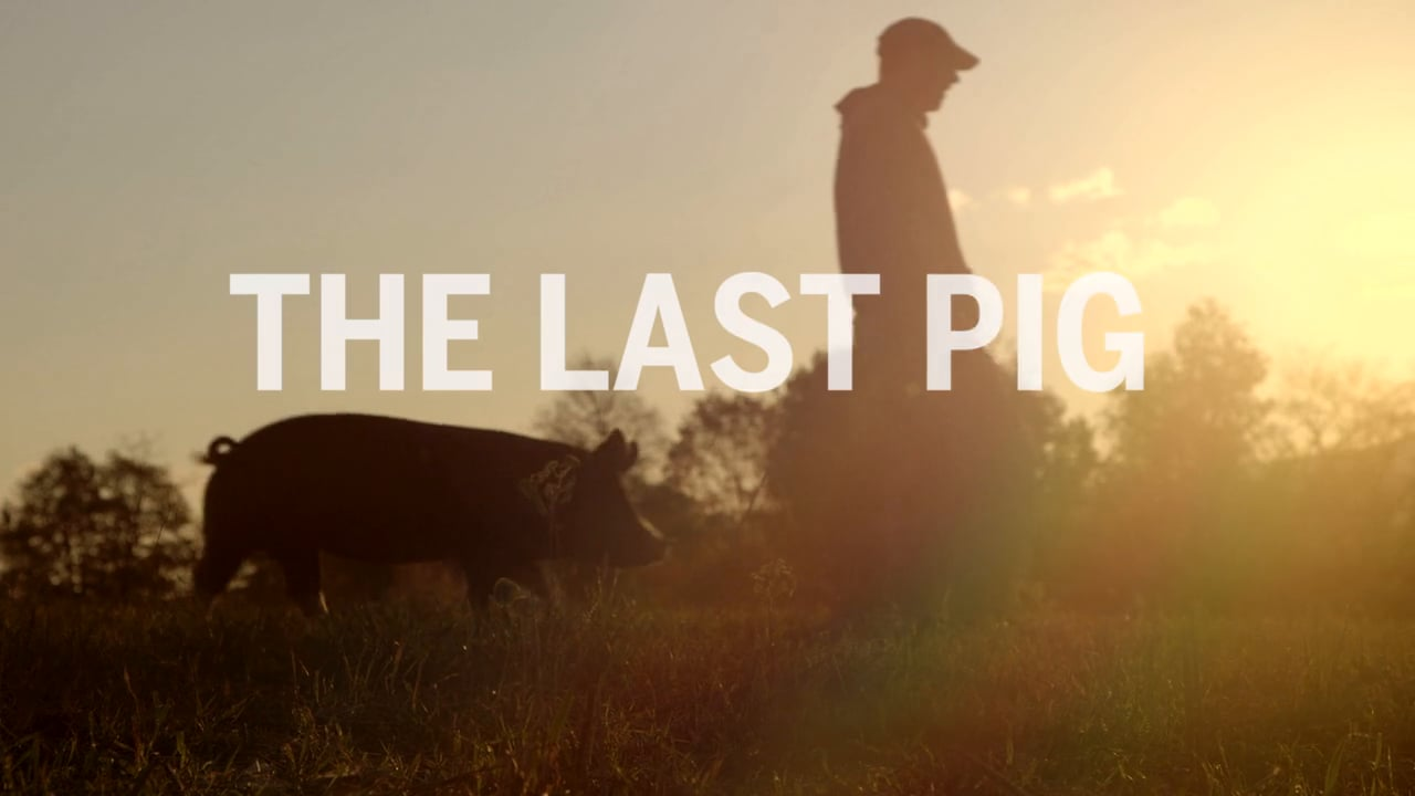 "Entrevista a Bob Comis, del documental ""The Last Pig"""