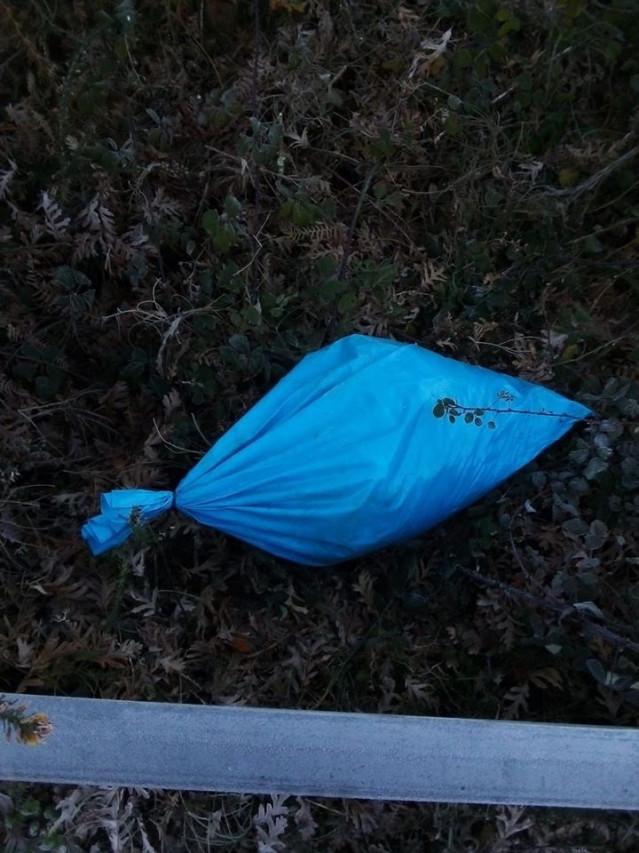 Hallan varios sacos con cachorros de perro y corderos descuartizados en un pueblo de Ourense
