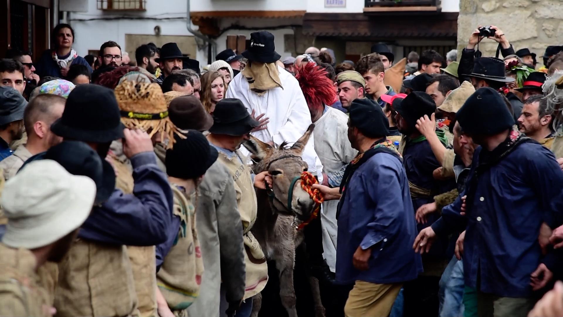Un burro maltratado en nombre de la tradición. ¡Ayúdanos a decir basta!