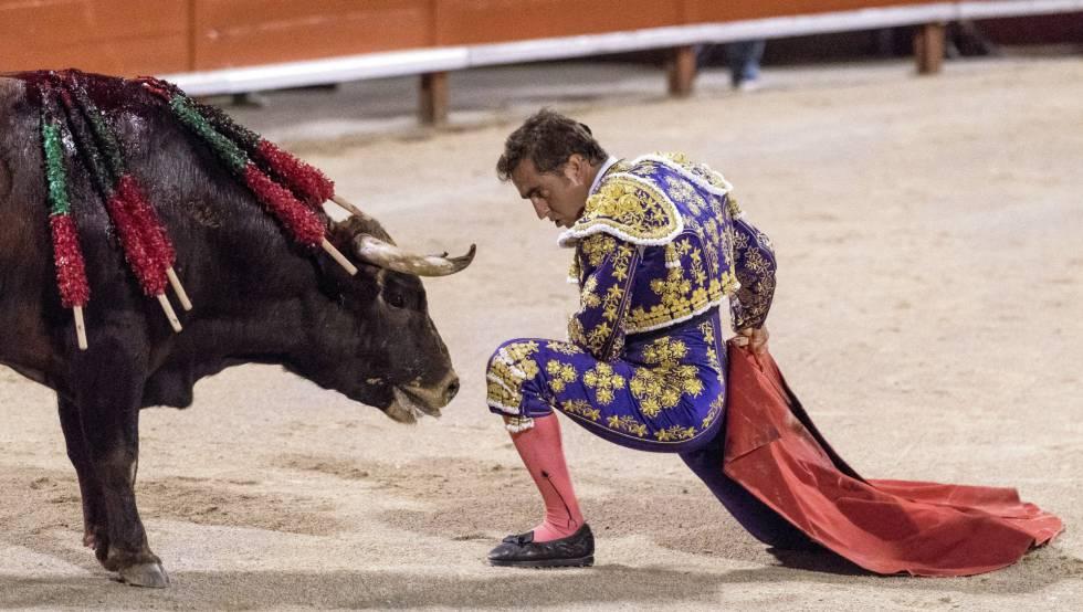 Las ONG pedimos al Gobierno que quiten los toros del Ministerio de Cultura