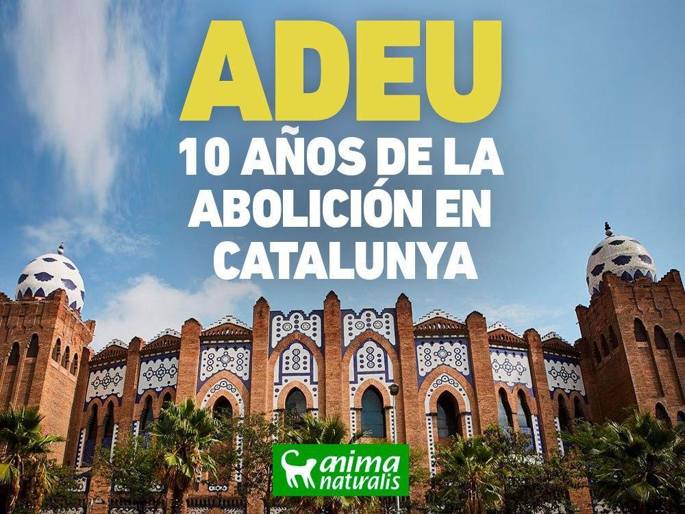 Se cumplen 10 años de la prohibición de las corridas de toros en Cataluña