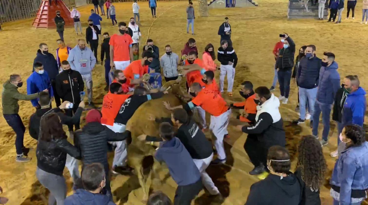 ¡Hacen el toro embolado en plena pandemia en Vila-Real!