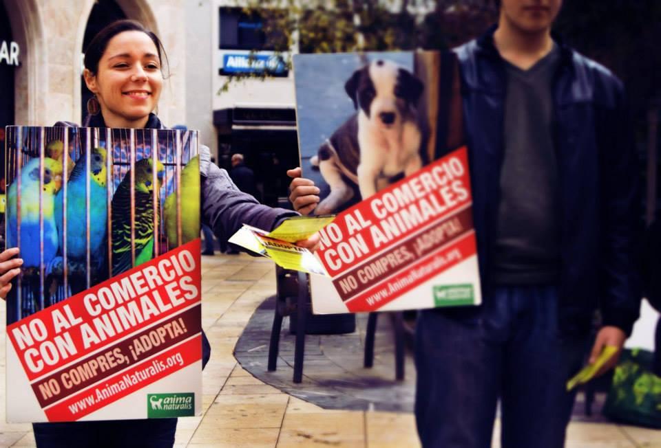 Protesta en Madrid: ¡No compres, adopta!